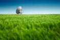 Générique - parabole dans champs de blé