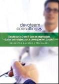 Devoteam Consulting - Enquête - Green IT - Europe - 2009