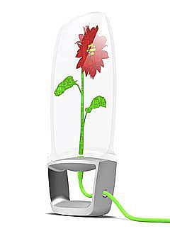 flowerpod.jpg