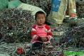 Générique - DEEE - Enfant jouant dans une décharge à ciel ouvert - 250px de large