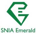 Logo - SNIA - Emerald - benchmark d'efficacité énergétique des systèmes de stockage