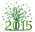 Bonne année - 2015 - 520px - green