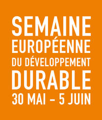 SEDD 2017 - logo - orange
