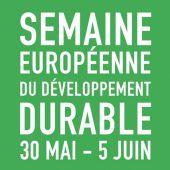 Logo SEDD 2017 vert